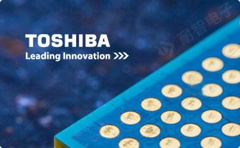 Toshiba公司的主要产品